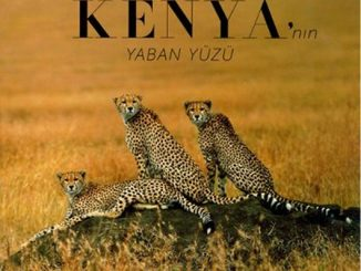 The Wild Side Of Kenya'nın Yaban Yüzü Pdf Kitap İndir